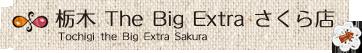 栃木The Big Extra さくら店